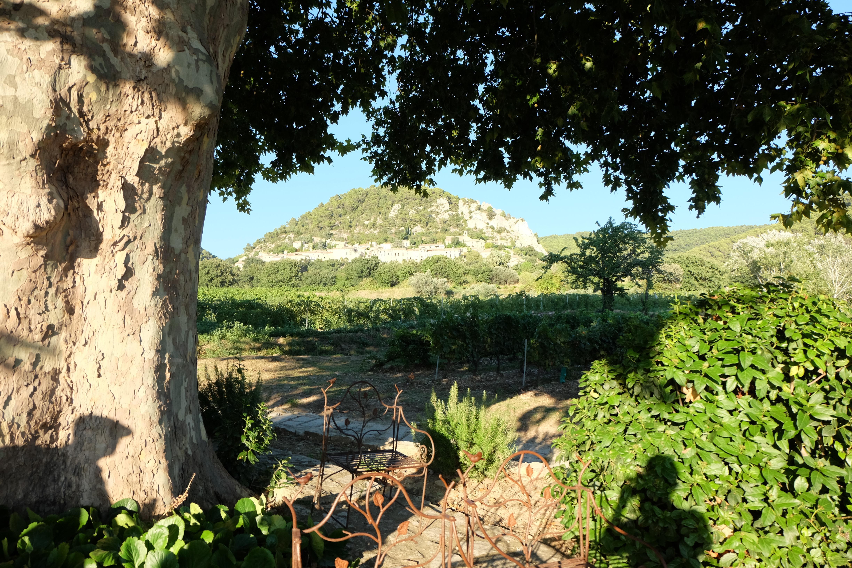 Lekker genieten in de Provence!