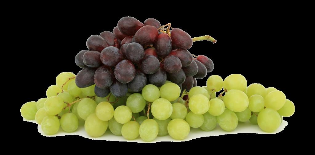 rodewitte-wijn